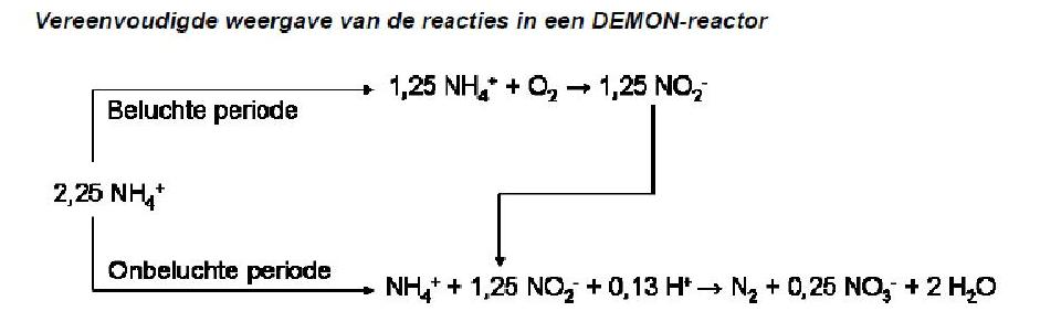 demon_proces